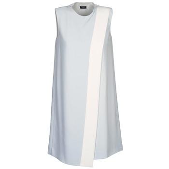 Oblečenie Ženy Krátke šaty Joseph SOL šedá / Biela