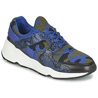Topánky Ženy Nízke tenisky Ash MATRIX Modrá / Maskáčový vzor