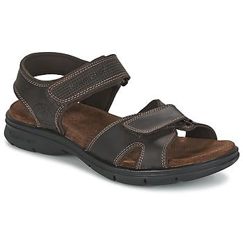 Topánky Muži Sandále Panama Jack SANDERS Hnedá