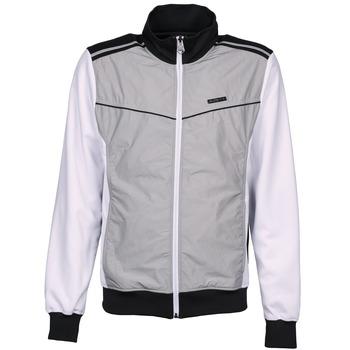 Oblečenie Muži Vrchné bundy Airness GRIFFIN šedá / Biela