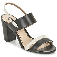 Topánky Ženy Sandále Hush puppies MOLLY MALIA čierna