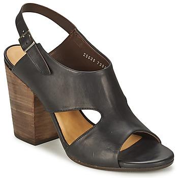 Topánky Ženy Sandále Coclico CASPAR Čierna