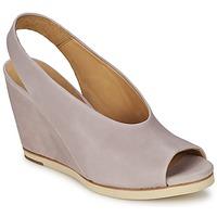 Topánky Ženy Sandále Coclico NELS Fialová