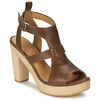 Topánky Ženy Sandále Coclico SHAE Hnedá