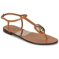 Topánky Ženy Žabky Roberto Cavalli XPX243-PZ220 Hnedá