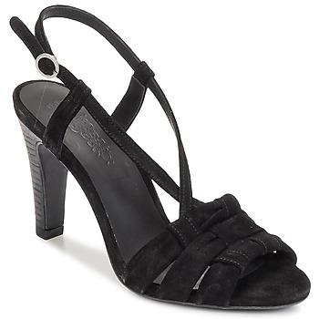 Topánky Ženy Sandále n.d.c. SOFIA čierna