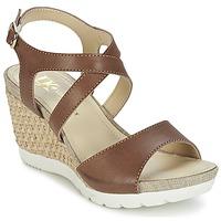 Topánky Ženy Sandále Lumberjack SISSI Hnedá / Béžová
