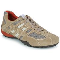 Topánky Muži Nízke tenisky Geox SNAKE Béžová