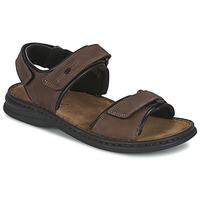 Topánky Muži Sandále Josef Seibel RAFE Hnedá / Čierna