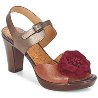 Topánky Ženy Sandále Chie Mihara JELIO Bordová