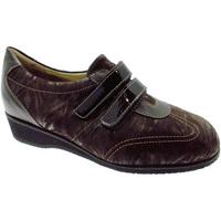 Topánky Ženy Nízke tenisky Calzaturificio Loren LOL8050m marrone