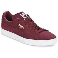 Topánky Nízke tenisky Puma SUEDE CLASSIC + Bordová