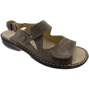 Topánky Ženy Sandále Calzaturificio Loren LOM2595ta tortora