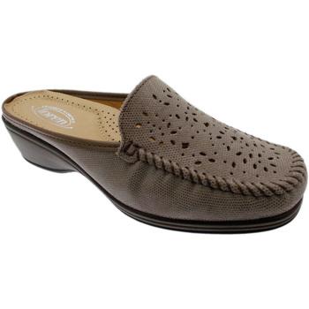 Topánky Ženy Šľapky Calzaturificio Loren LOK3953ta tortora