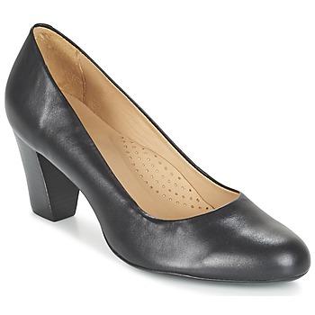 Topánky Ženy Lodičky Hush puppies ALEGRIA čierna