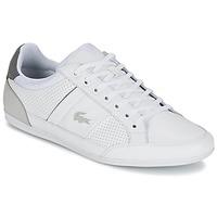 Topánky Muži Nízke tenisky Lacoste CHAYMON 316 1 Biela / Šedá