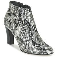 Topánky Ženy Čižmičky Betty London FODEN Hadí vzor