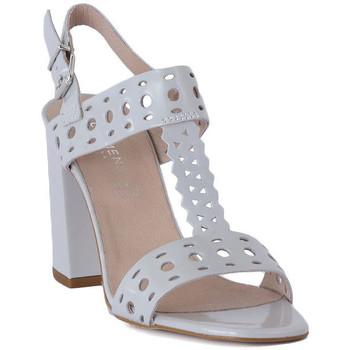 Topánky Ženy Sandále Carmens Padova ABRASIVO Grigio