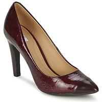 Topánky Ženy Lodičky Geox CAROLINE Bordová