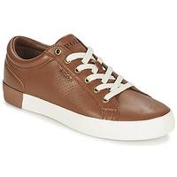Topánky Muži Nízke tenisky Ralph Lauren ALDRIC II Hnedá