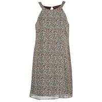 Oblečenie Ženy Krátke šaty DDP DAMERIA Viacfarebná