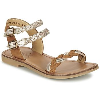 Topánky Dievčatá Sandále Shwik LAZAR WOWO Ťavia hnedá / Zlatá