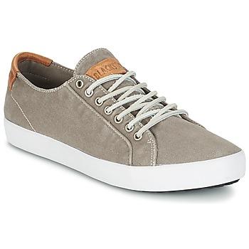 Topánky Muži Nízke tenisky Blackstone NM95 šedá