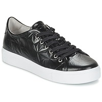 Topánky Ženy Nízke tenisky Blackstone NL34 čierna