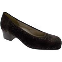 Topánky Ženy Lodičky Calzaturificio Loren LOP5414ma marrone