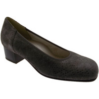 Topánky Ženy Lodičky Calzaturificio Loren LOP5414to tortora