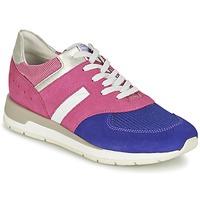 Topánky Ženy Nízke tenisky Geox SHAHIRA A Ružová / Fialová
