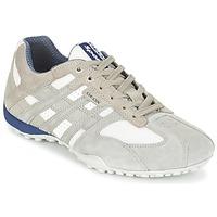 Topánky Muži Nízke tenisky Geox SNAKE šedá / Biela