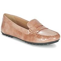 Topánky Ženy Mokasíny Geox D LEELYAN B Béžová