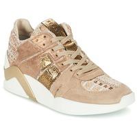Topánky Ženy Členkové tenisky Serafini CHICAGO Béžová / Zlatá