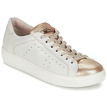 Topánky Ženy Nízke tenisky Tosca Blu  Biela / Zlatá