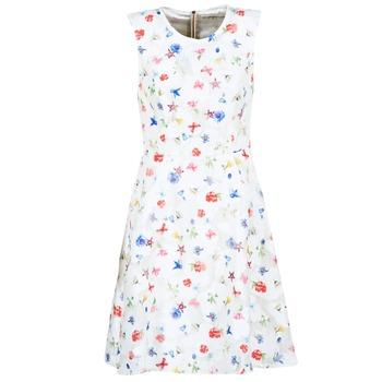 Oblečenie Ženy Krátke šaty Derhy MAESTRIA Biela