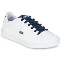 Topánky Deti Nízke tenisky Lacoste CARNABY EVO Biela / Námornícka modrá