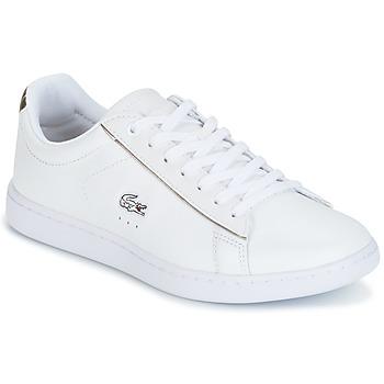 Topánky Ženy Nízke tenisky Lacoste CARNABY EVO Biela