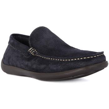 Topánky Muži Mokasíny Frau CASTORO BLU Blu