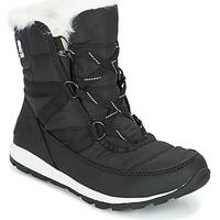 Topánky Ženy Obuv do snehu Sorel WHITNEY SHORT LACE Čierna