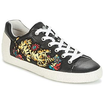 Topánky Ženy Nízke tenisky Ash NIAGARA čierna