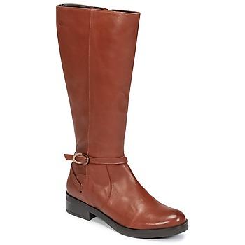 Topánky Ženy Čižmy do mesta Betty London HOVANI Ťavia hnedá