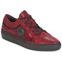 Topánky Ženy Nízke tenisky Pataugas YORK červená