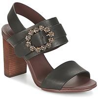 Topánky Ženy Sandále See by Chloé SB30123 Čierna
