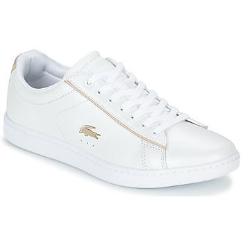 Topánky Ženy Nízke tenisky Lacoste CARNABY EVO 118 6 Biela