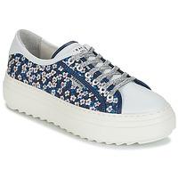 Topánky Ženy Nízke tenisky Serafini SOHO Modrá