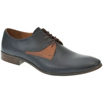 Topánky Muži Derbie I-Guana Modro hnedé kožené poltopánky modrá