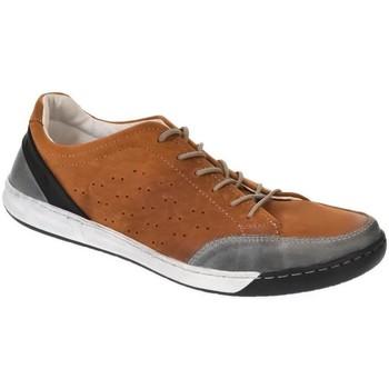 Topánky Muži Nízke tenisky Krezus PÁNSKE VIACFAREBNÉ KOŽENÉ TENISKY ROYAL hnedá
