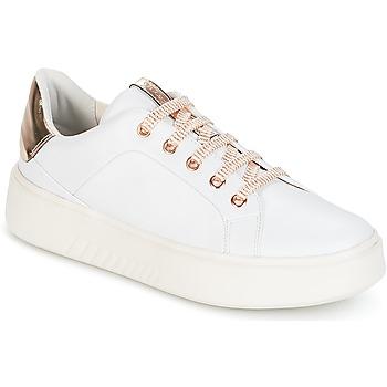 Topánky Ženy Nízke tenisky Geox D NHENBUS A Biela