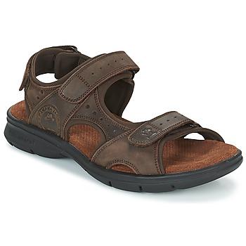 Topánky Muži Sandále Panama Jack SALTON Hnedá